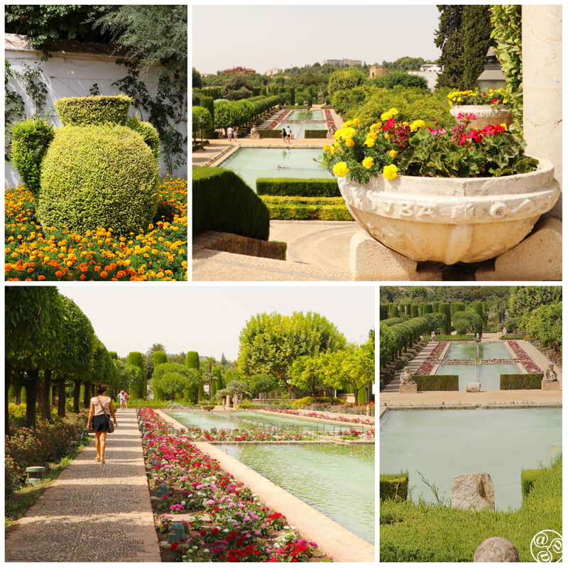 The colourful and very well maintained gardens in the Alcázar ©Max Phythian