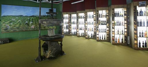 El Museo de Aceite.