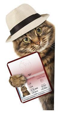 Have passport will travel ©iStock