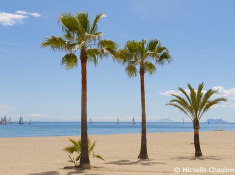Beautiful Estepona Beach