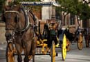 Private Horse & Carriage Tour of Seville