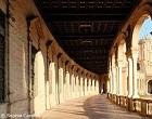 Unusual Seville