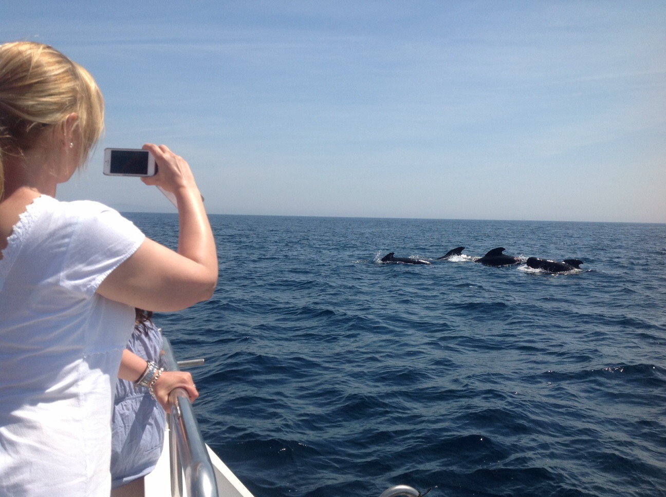 Whale watching trips make for a fascinating day out. ©Andalucia.com