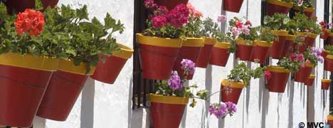 The flower filled patios of Ronda.