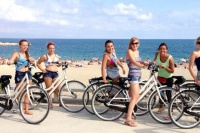 Guided Bike Tour