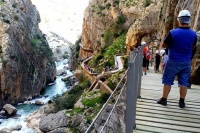 Caminito del Rey private walking tour